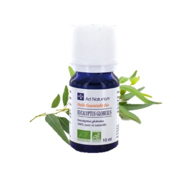 huile-essentielle-bio-ad-naturam-eucalyptus-globulus