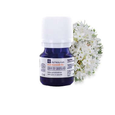 huile-essentielle-bio-ad-naturam-ledon-du-groenlan