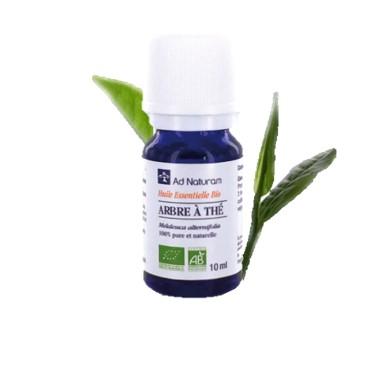 huile-essentielle-bio-ad-naturam-tea-tree